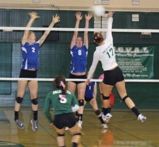 Bella Graves (17) goes up for the spike against two Los Altos blockers in a league matchup against Los Altos.