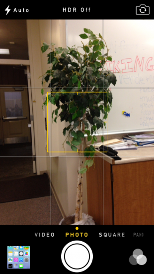 An iPhone focuses on a tree  in the English Computer Lab at Paly through iOS 7's new camera app. Photo by Liana Pickrell.