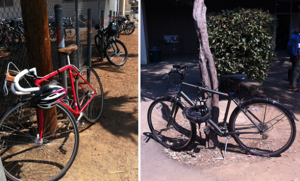 Students park their bikes to poles, fences, trees - to any spot they can find on campus. Photos by Lizzie Chun.