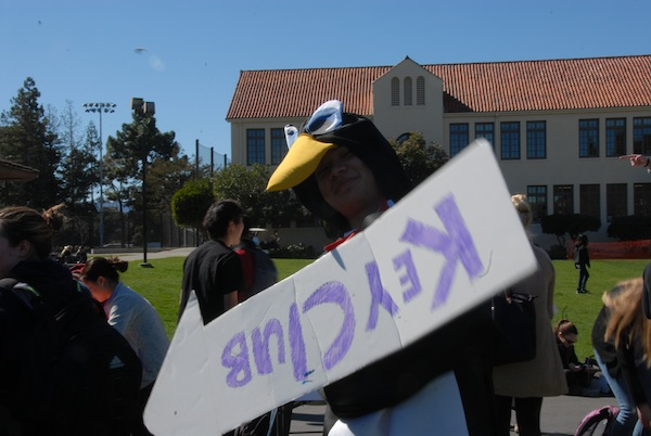 Junior George Lu dresses up as a penguin, the Key Club mascot. Photo by Liana Pickrell.
