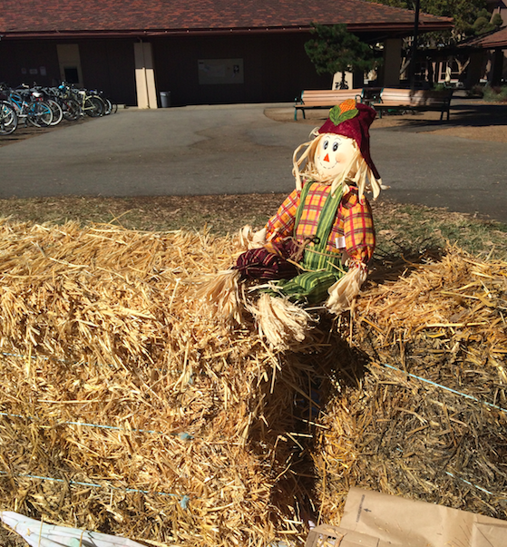 The sophomore class set up hay bales on the Quad to represent their Ranch dressing theme. Photo by Chloe Fishman.