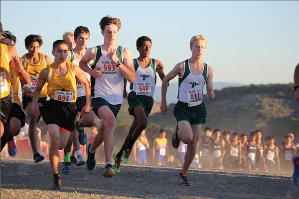 Junior Sam Desre, sophomores Kent Slaney and Naveen Pai, and senior Lucas Matison run on the 2.95 mile trail at Crystal Springs on Nov. 5. The Palo Alto High School boys' varsity team came in first. Photo courtesy of Malcom Slaney.