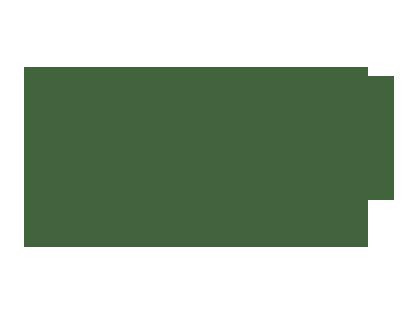 paly_film_fest_logo2015