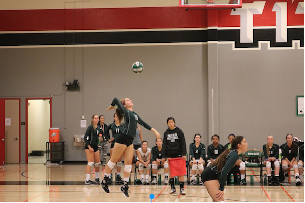 Junior hitter Katie Passerello serves the ball over the net to Mountain View High School defenders. Palo Alto won the game 3-2 in sets: 25-17, 25-18, 20-25, 18-25, 15-8. Photo by Victor Carlsson.