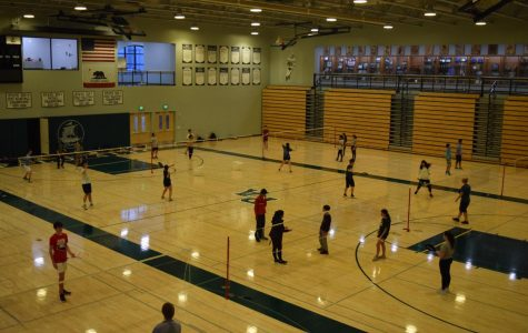 Season Recap: Badminton team moving down to El Camino League