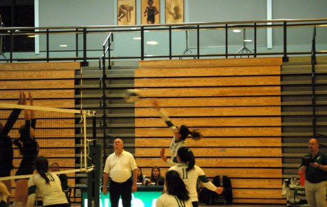 Girls' volleyball defeats Monte Vista, advances in playoffs