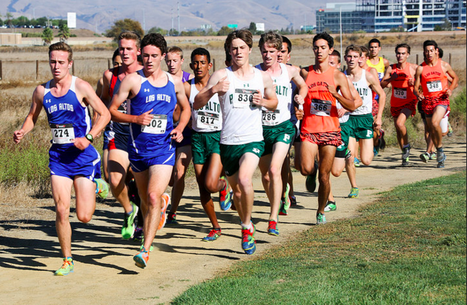 Juniors Kent Slaney and Naveen pai run at the Sunnyvale baylands earlier this season. According to Coach Kelsey Feeley, the Palo Alto High School boys' cross country team has been working hard to prepare for tomorrow's state championships. Photo courtesy of Malcom Stanley.