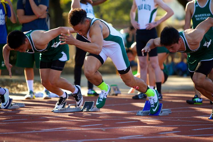 Track And Field Triumphs Over Homestead The Paly Voice