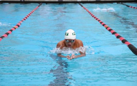 Season recap: Girls' and boys' teams finish strong for both swimming and diving
