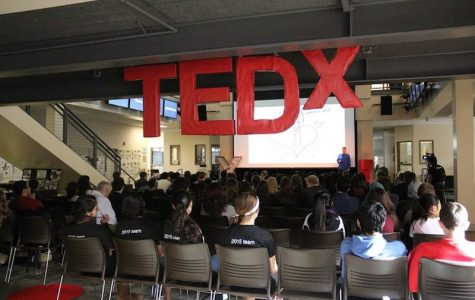 TEDx's 2015 conference. Photo: Adele Bloch