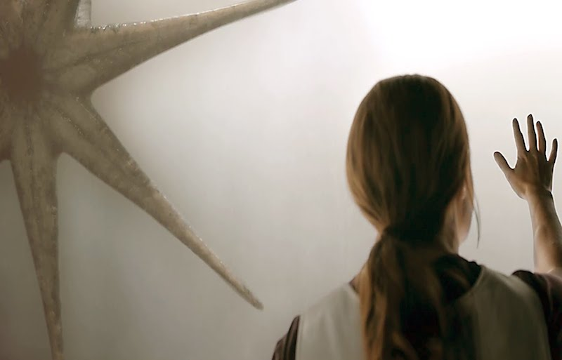 Amy Adams stars as a linguist attempting to communicate with extraterrestrials that have landed on Earth in order to save the world in the new science fiction thriller, Arrival.