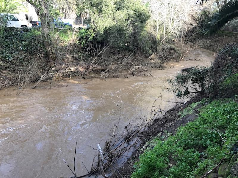 Palo Alto cautiously celebrates end of drought