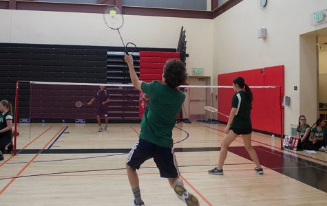 Season recap: Badminton team exceeds goals despite losses