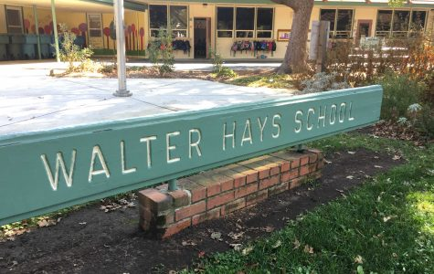 Mountain lion, cub spotted near Palo Alto schools