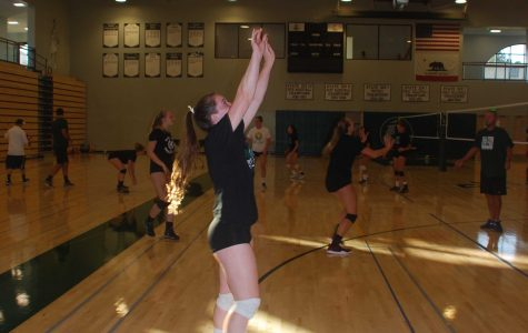 Volleyball opener against Gunn to kick off sports in Peery Family Center