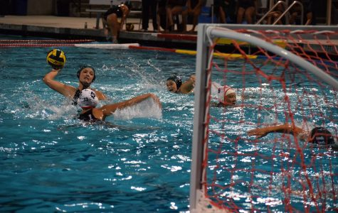 Preview: Girls' water polo looks forward to rivalry game at Gunn