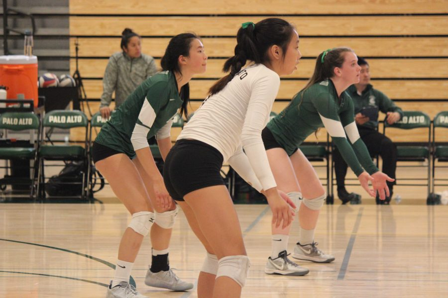Volleyball to face Homestead in first home league game