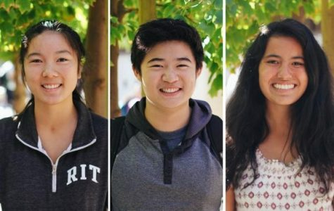 The Paly Voice asked experienced club leaders what their advice for new clubs was. Senior Leila Tjiang, junior Andrew Shih and junior Caity Berry offer their insights.