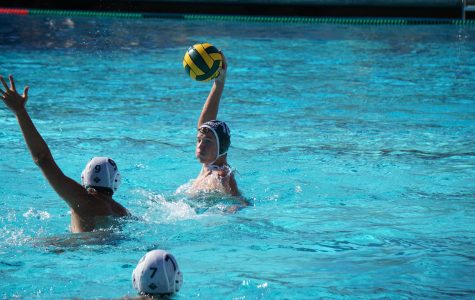 Recap: Boys' water polo fails to clinch CCS playoff berth