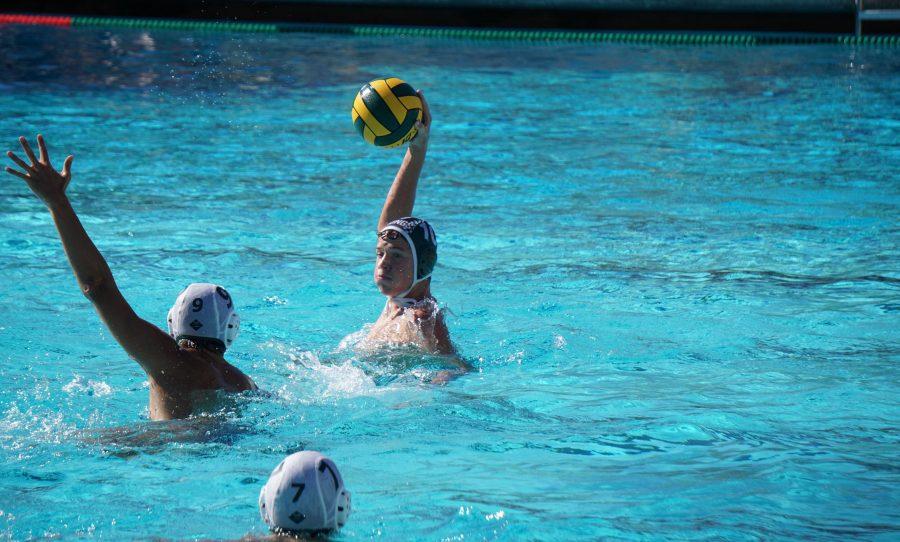 Recap: Boys' water polo fails to clinch CCS playoff berth