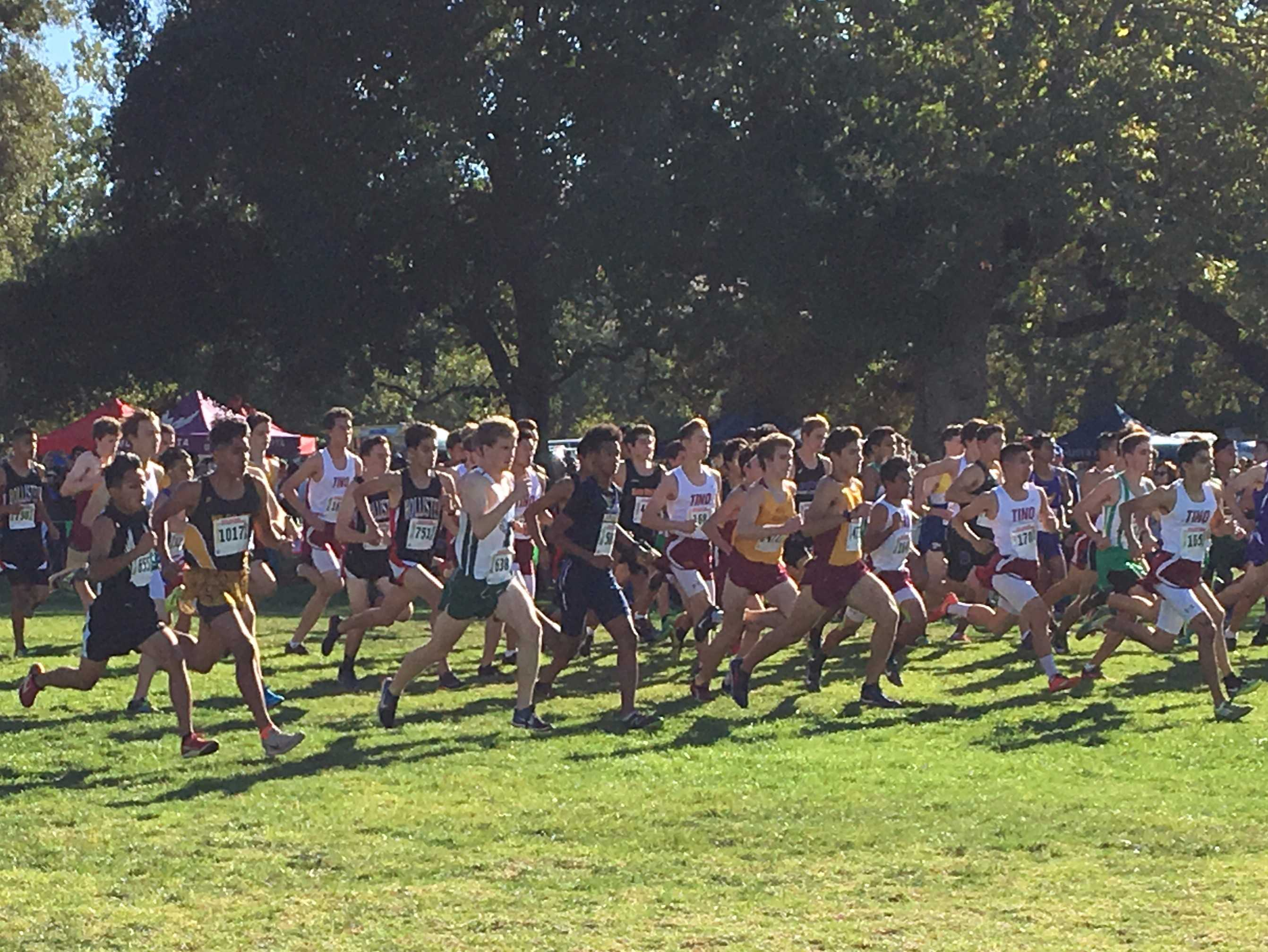 The Palo Alto High School boys' cross country team races across Toro Park in the Central Coast Section meet. Five out of the seven boys' varsity runners placed in the top 50 while four out of the seven girls placed in the top 50. Photo: Maya Akkaraju