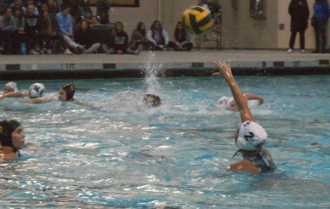 Recap: Girls' water polo beats MA in CCS quarterfinals