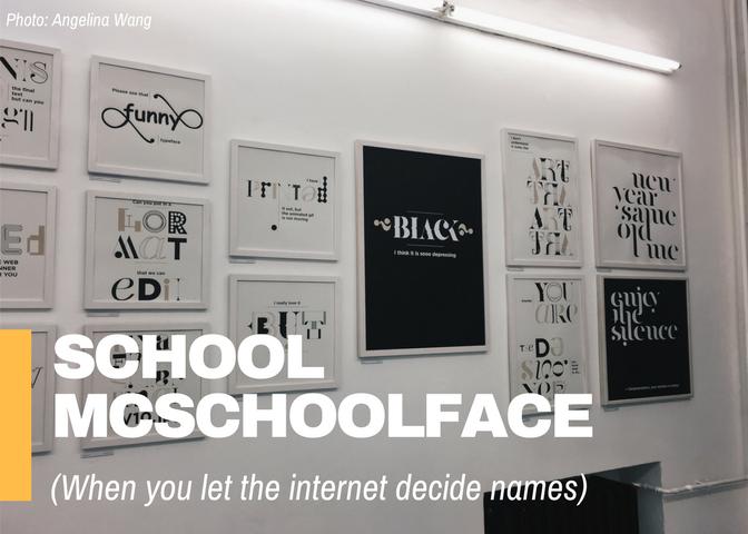 School McSchoolFace