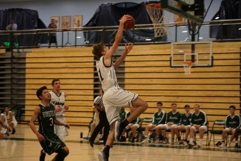 Boys' basketball soars past Eagles