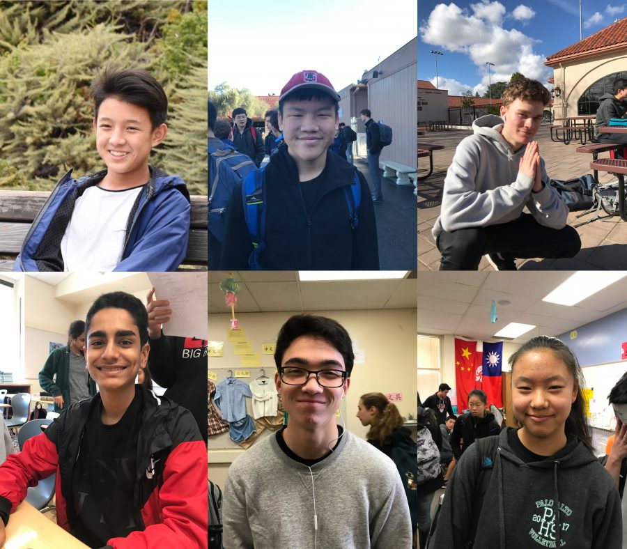 Did Paly students fail their New Year's resolutions?