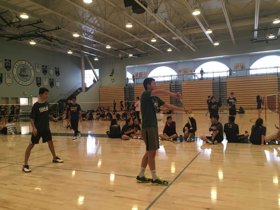 Palo Alto High School sophomore Jeffrey Mi prepares to serve the birdie to players from Milpitas High School in yesterday's boys' varsity one doubles badminton match. Mi and senior captain Tilak Misner went on to lose, 2-1.