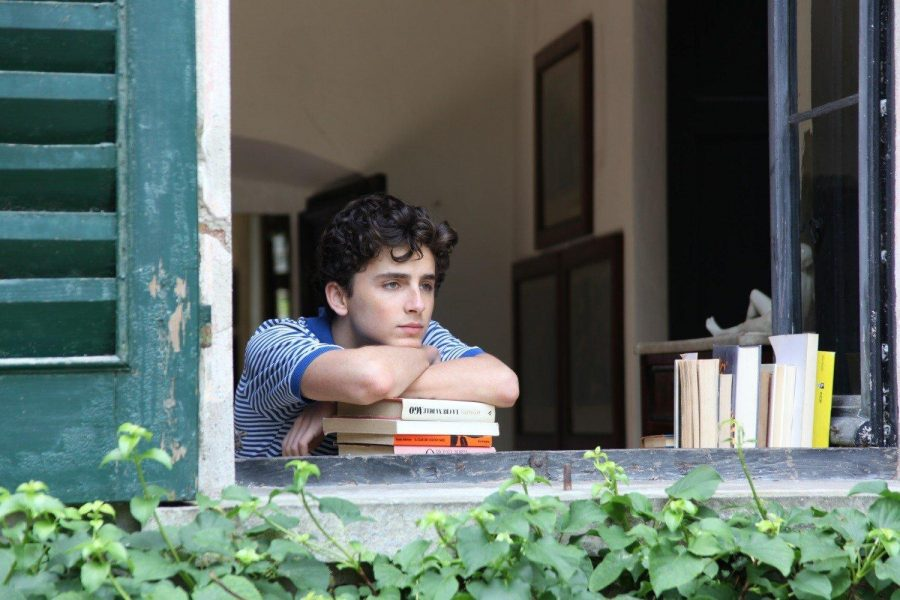 'Call Me by Your Name' demonstrates art of filmmaking