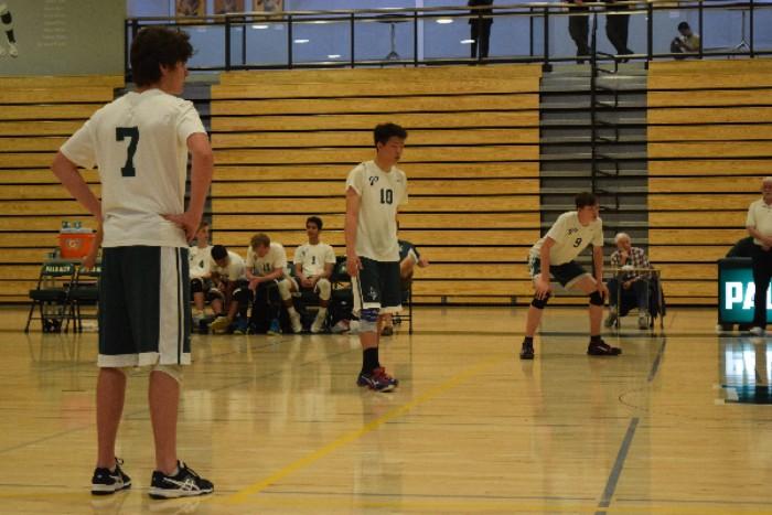 Boys' volleyball trounced by Gunn