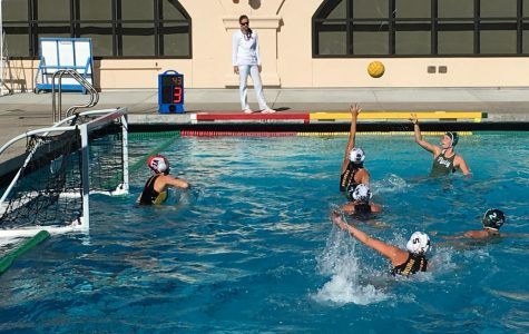 Girls' water polo: Paly defeated in tense fourth quarter battle