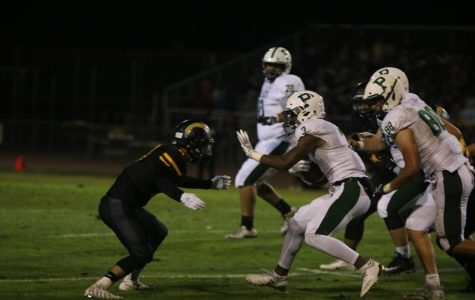 Football: Vikings unable to overcome slow start at Wilcox