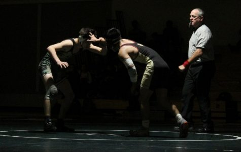 Wrestling: Paly topples Cupertino in first home meet