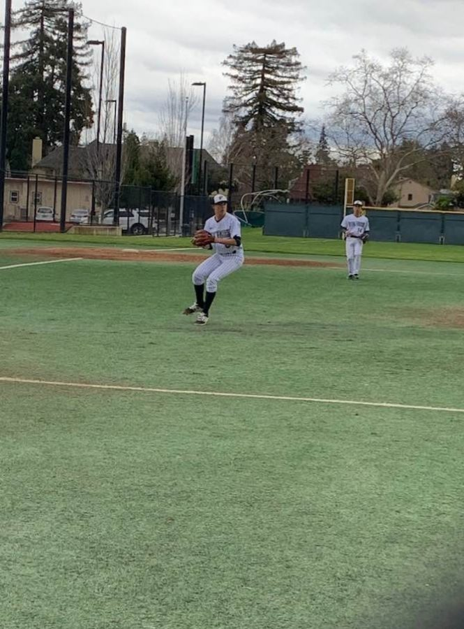 Baseball%3A+Paly+junior+throws+no-hitter+against+SHP