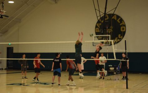 Season Preview: Boys' volleyball looks to reach new heights
