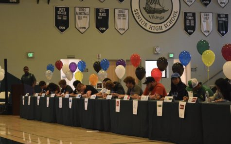 29 Paly athletes to commit to schools during National Signing Day event