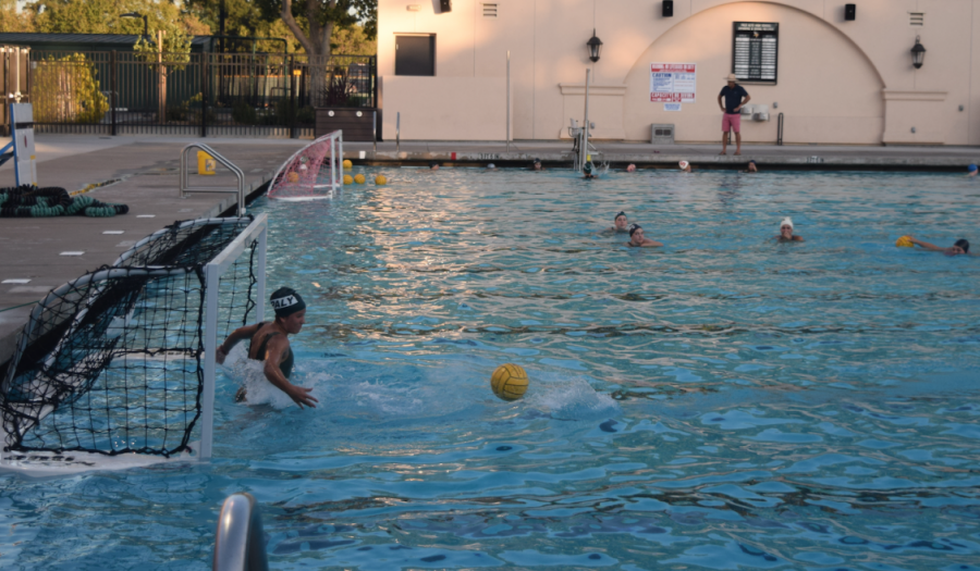 Girls' Water Polo hopes to place top 3 in league