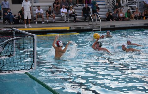 Boys' Varsity water polo crushes Homestead in first conference game of season