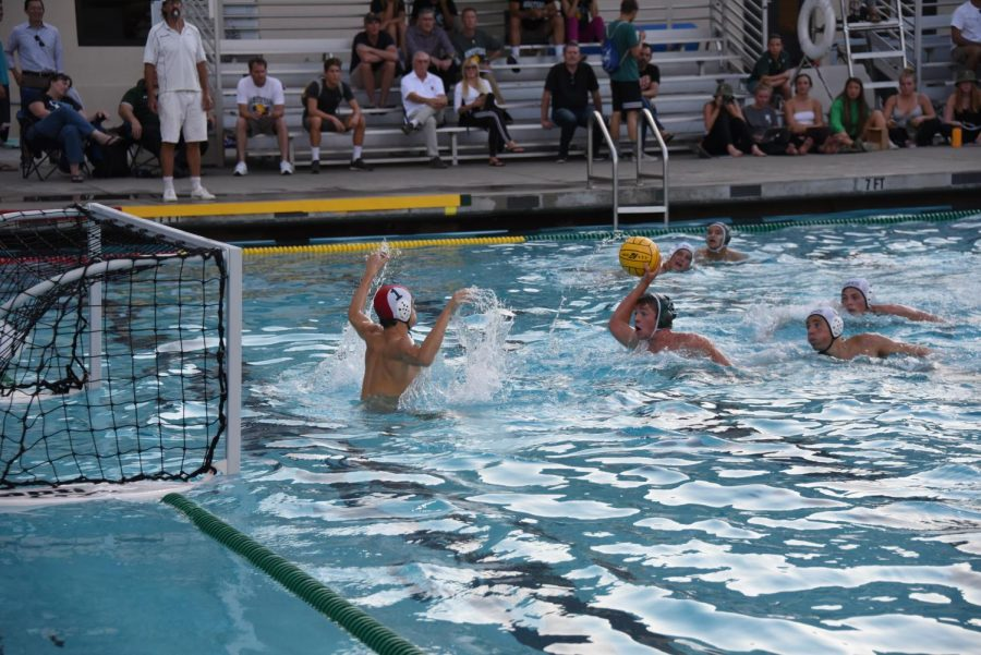 Boys Varsity water polo crushes Homestead in first conference game of season