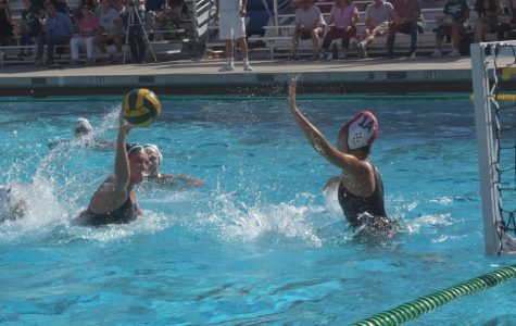 "Junior Hana Erickson takes a shot against the Homestead mustangs goalie. The Palo Alto High School girls water polo team triumphed over the mustangs 11-7, setting a hopeful tone for the rest of the season. ""We've always been the bottom two in our league, so I think this is a really exciting start to our season,"" Erickson said."