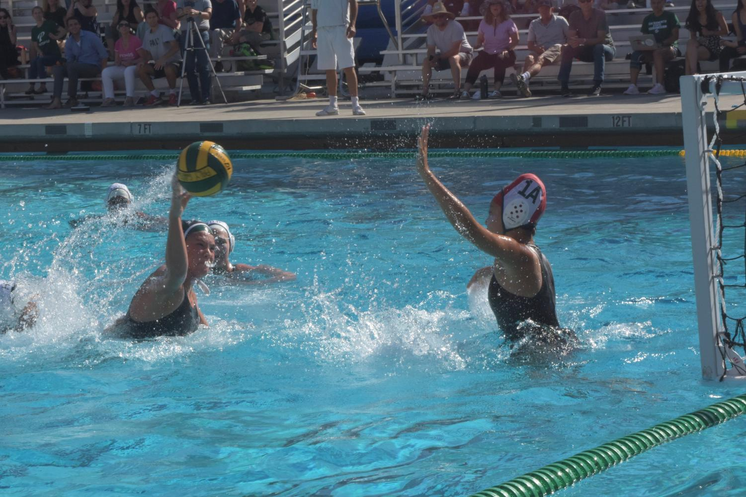 """Junior Hana Erickson takes a shot against the Homestead mustangs goalie. The Palo Alto High School girls water polo team triumphed over the mustangs 11-7, setting a hopeful tone for the rest of the season. """"We've always been the bottom two in our league, so I think this is a really exciting start to our season,"""" Erickson said."""