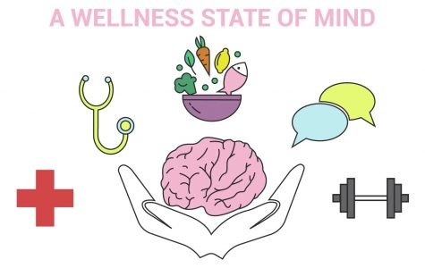 Fair aims to bring 'a Wellness State of Mind' to students