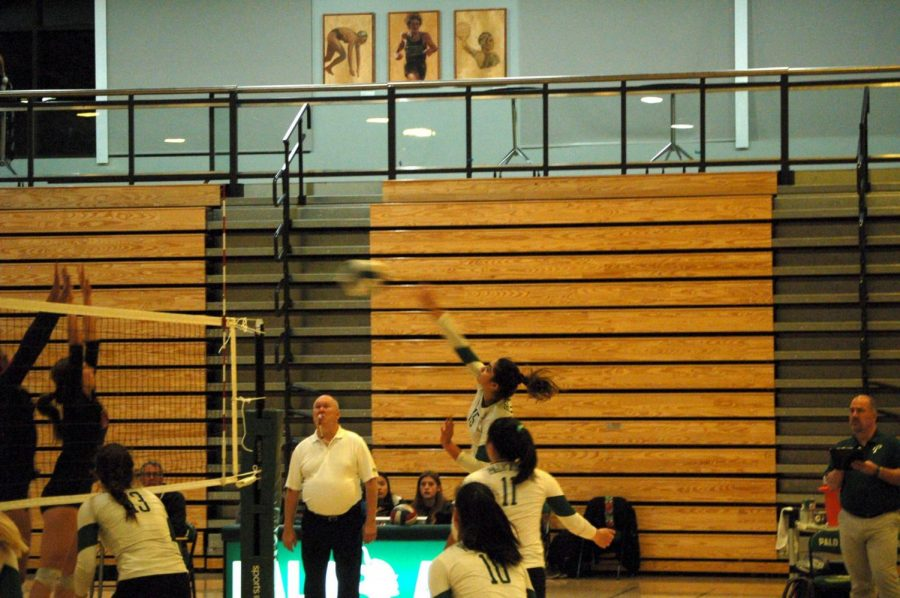 "Junior middle blocker Trisha Razdan spikes the ball against Monte Vista. The Vikings won the match 3-1 after losing to Menlo Atherton in the first round of CCS. ""We just wanted to come out strong and show all the hard work we've been doing,"" Razdan said. Photo: Malia Wanderer"