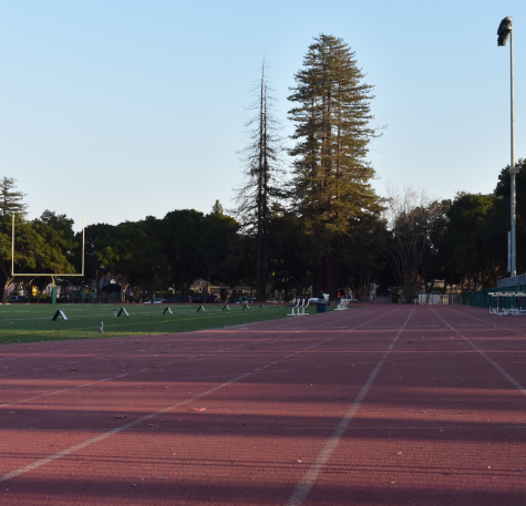 Faced with overcrowding, Paly athletics looks to Greene's facilities