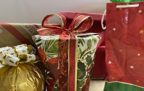 Verbatim: Paly teachers' plans for winter break
