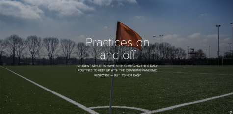 Verbatim: Sports during COVID-19