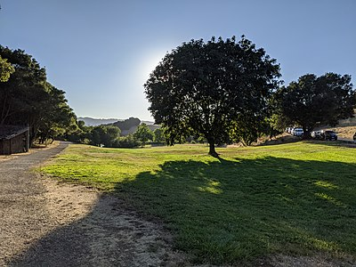 City council opens Foothills Park to nonresidents