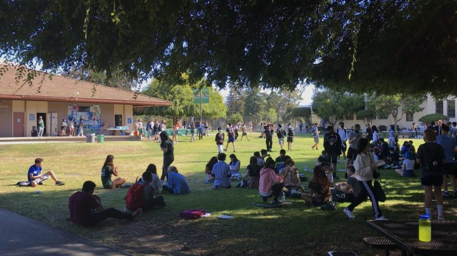 Incoming freshmen experience in-person orientation
